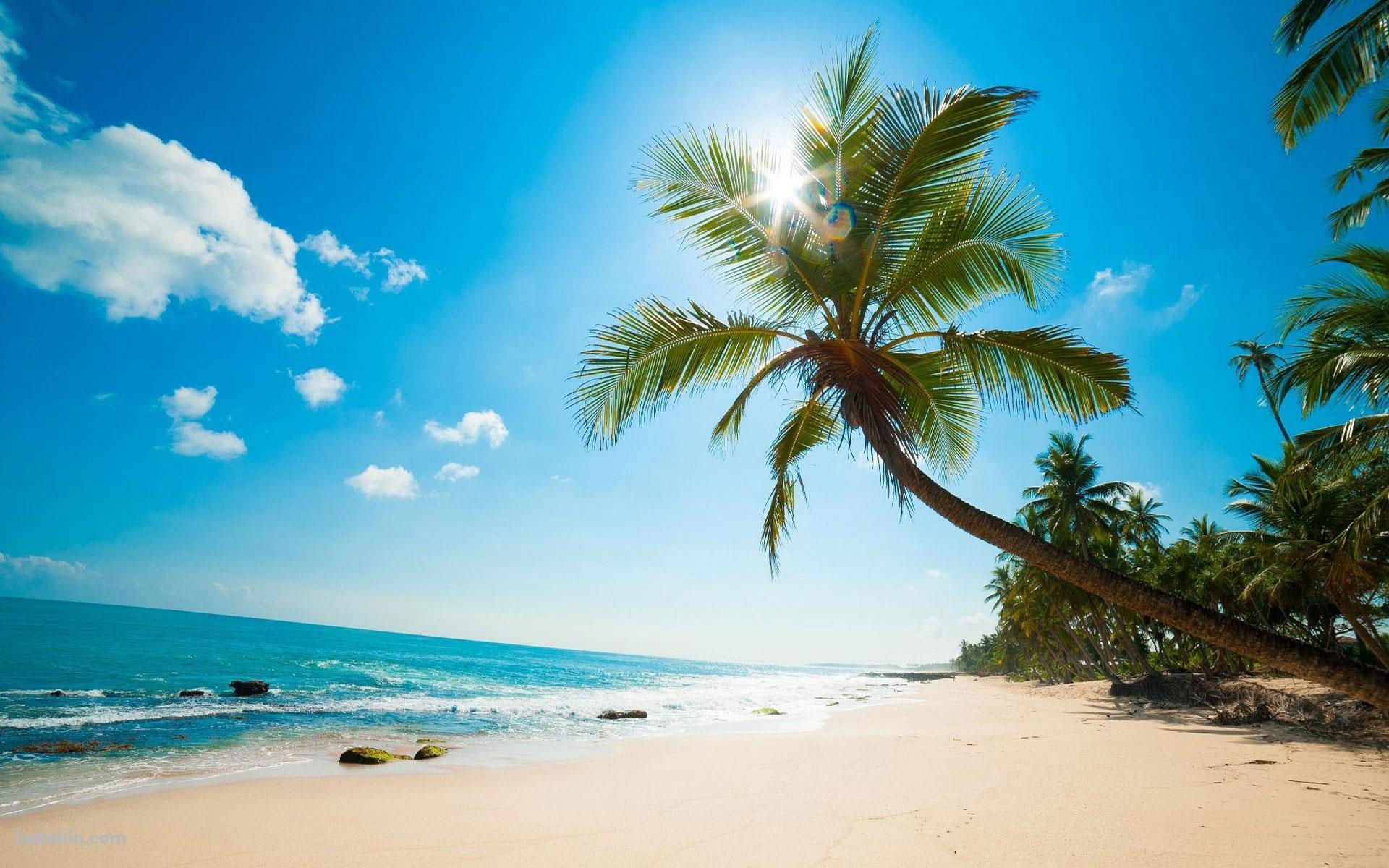 ハワイで25年間皆さまの眼の疾患を治療しています。